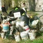 Giornata ecologica 2018 - 3